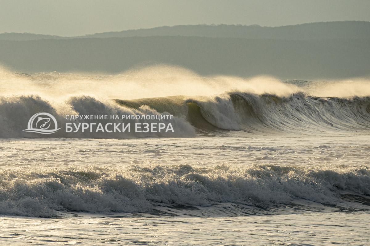 Укротяване на морски бури