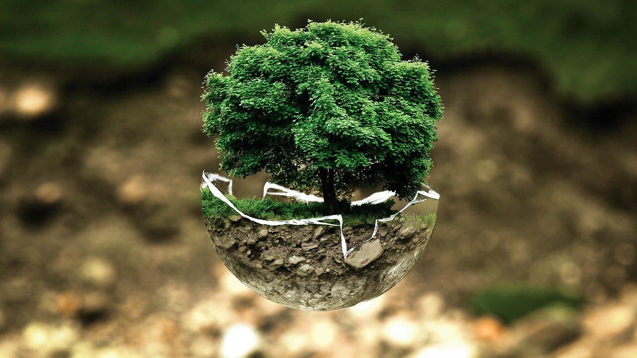 """""""Часът на Земята"""" е днес. Да опазим планетата!"""
