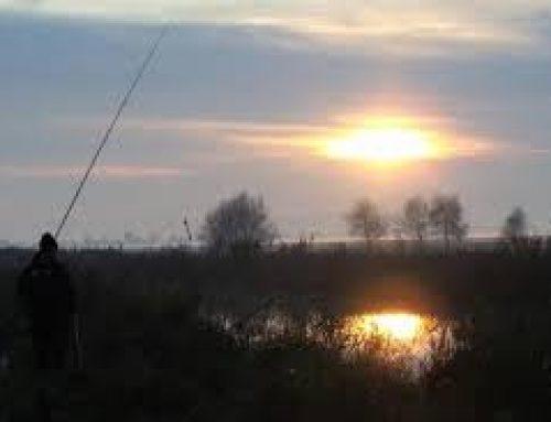 Настана най-доброто време за риболов на големи щуки